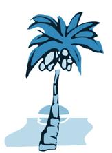 Silver Lake Optometry palm tree