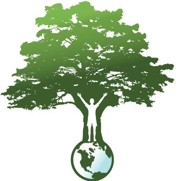 Wildwoods Foundation